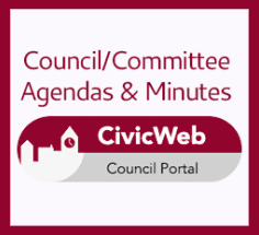 View our Civic Web Council portal